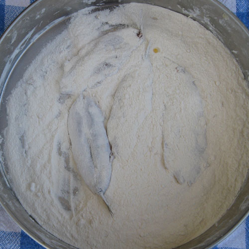 Alici indorate e fritte; prima fase nella farina